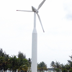 Windmill on Bacardi Property