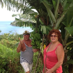 Tortola, British Virgin Islands - We love bananas