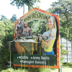 Rain Forrest Station tour on the second days in Cairns
