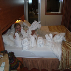 towel animal gathering