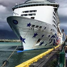 Docked Maui
