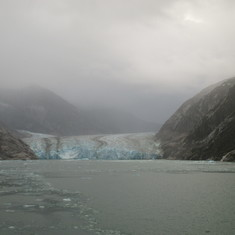 We saw 5 glaciers total