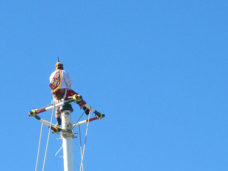 Puerto Vallarta, Mexico - Papantia Bird Men in Puerto Vallarta #4