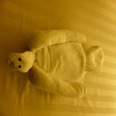 Turtle Towel Animal
