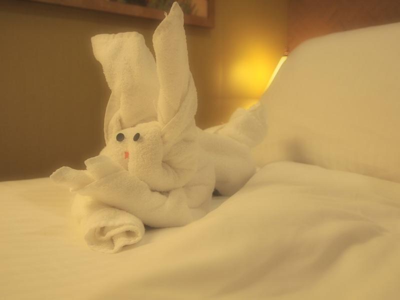 Bunny - Carnival Splendor