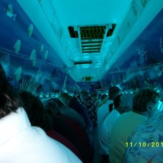 Cozumel, Mexico - The inside of the Sub Ocean Tour. Each person had their own fan on the window.
