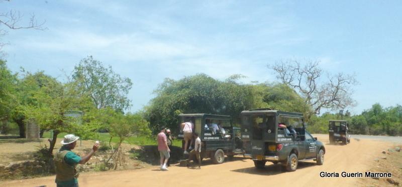 Hambantota, Sri Lanka - Yala National Park, Sri Lanka