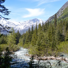 Hiking Tongass National Forest on the Heli, Hike & Rail Excursion in Skagway