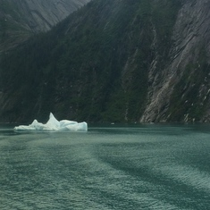 Iceberg in Tracy Arm
