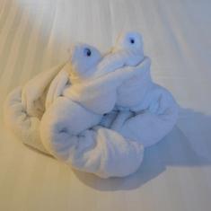 Eurodam towel frog