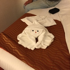 New Orleans, Louisiana - Our first towel animal