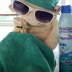 Fav towel animal on the ship