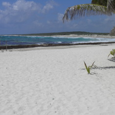 Beach East Coast Cozumel