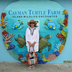 George Town, Grand Cayman - Super Farm