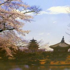 Beautiful, temples