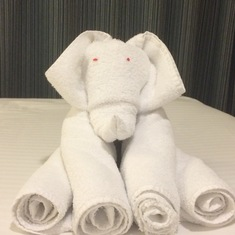 First towel animal