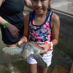 She actually caught and held a real live turtle (Cayman's Turtle Farm)