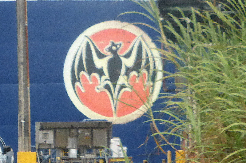 Bacardi Logo - Carnival Liberty