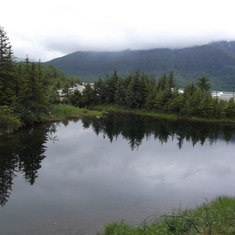 Juneau, Alaska - Mendenhall Glacier Area Juneau