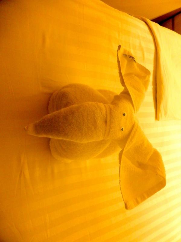 Elephant Towel Animals - Amsterdam