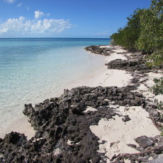 Cococay (Cruiseline's Private Island) - Cocoa Cay - along the Nature Trail