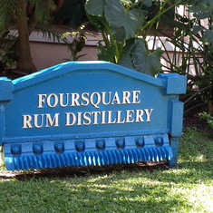 Rum Factory and Mahogany Tour