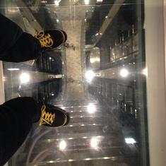 Quantum of the Seas Glass Floor