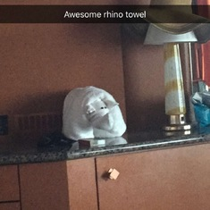 One of the awesome towel animals we had waiting in our room!