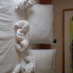 Beautiful towel animals creations.7