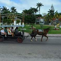 Mahogany Bay, Roatan, Bay Islands, Honduras - Horse drawn carriage Mahogany Bay, Isla Roatan