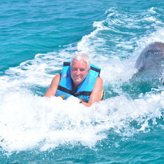 Dolphin push on boogie board in Cozumel