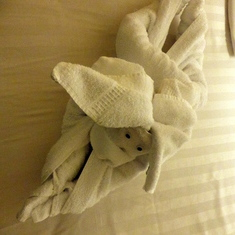Bunny Towel Animal