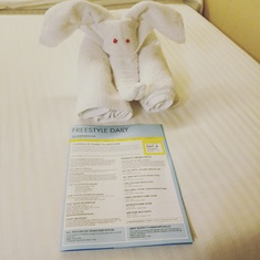 elephant towel and schedule