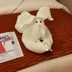 Nightly Towel Animal