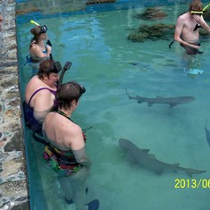 My sister and I swimming with sharks at Coral World.