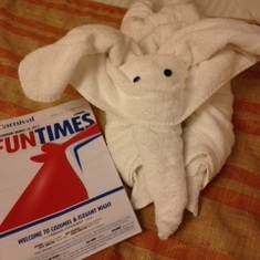 Elephant and Fun Times Room 1045