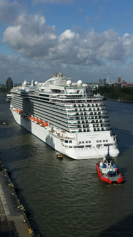 Royal Princess in Rotterdam