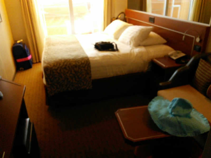 Large Oceanview Stateroom Obstructed View Cabin