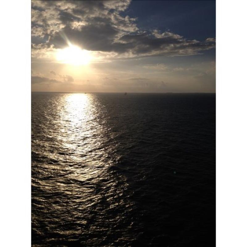 Serenade of the Seas cabin 8512