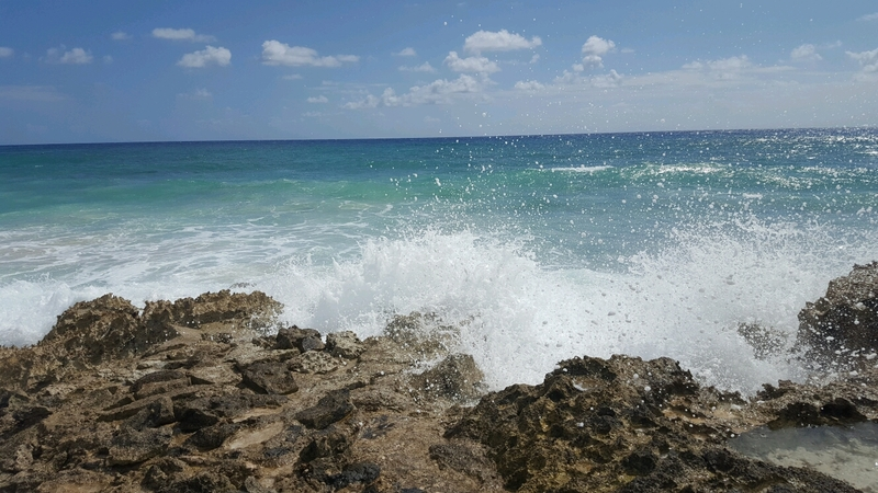 beach buggy and snorkeling excursion was awesome in cozumel, Mexican lunch with included with this beautiful view