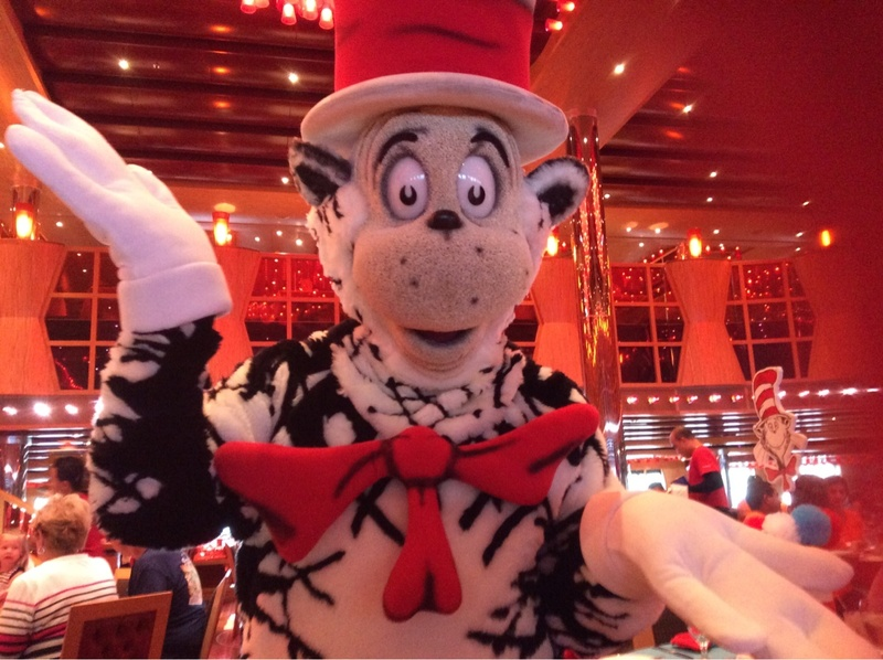 Cat in the hat - Carnival Dream