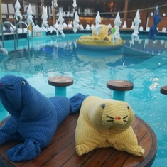 Venus Lido Pool on Carnival Pride