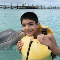 Bahamas Dolphin Excursion